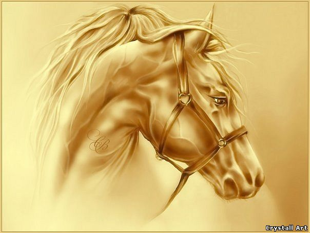 Crystall Art portrait og horse