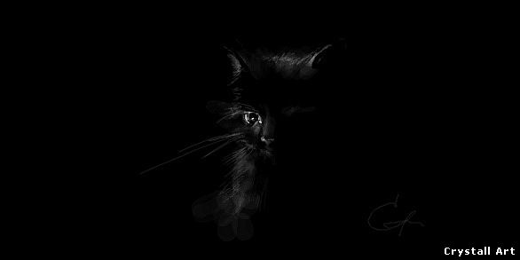 Crystall_Art_grafitti-Black_Cat
